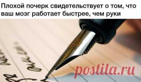 Мария Сократова (@masha_sokratova) | Твиттер