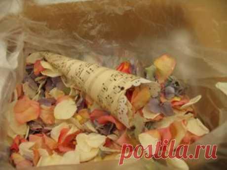 Petal Cone Template | Weddingbee