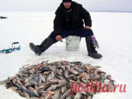 Как атмосферное давление влияет на зимнюю рыбалку - зимняя рыбалка Если говорить об атмосферном давлении в компании рыбаков, то беседующие непременно разделятся на два лагеря.