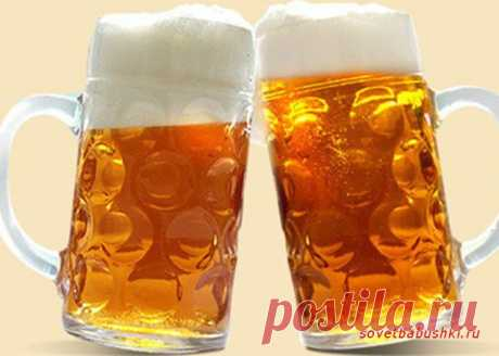 Питательное значение пива | Советы бабушки