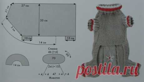 Одежда для кошек своими руками, модели с описанием и выкройками