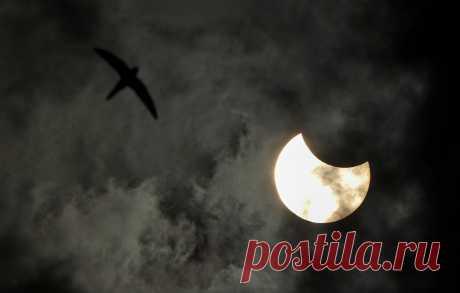 Солнечное затмение - фото 5 из 9
