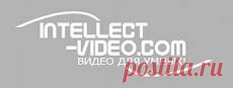 Смотреть Коллекция развивающих мультфильмов Роберта Саакянца онлайн. Для детей. онлайн-видео intellect-video.com