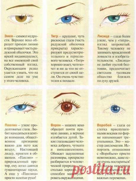 Характер по форме глаза.