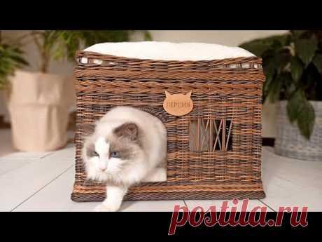 Двухэтажный домик для кошки