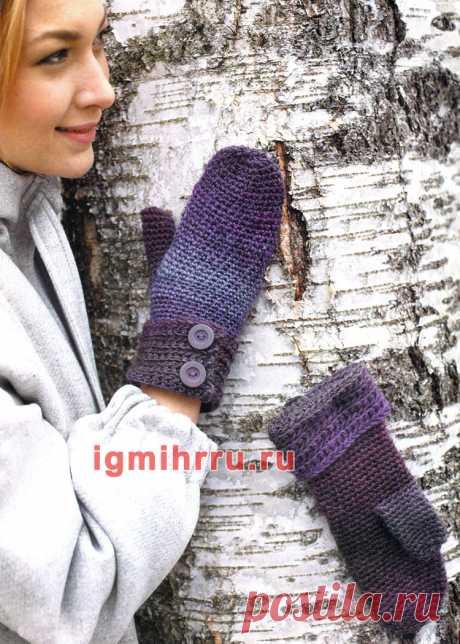 Фиолетовые варежки с пуговицами. Вязание крючком