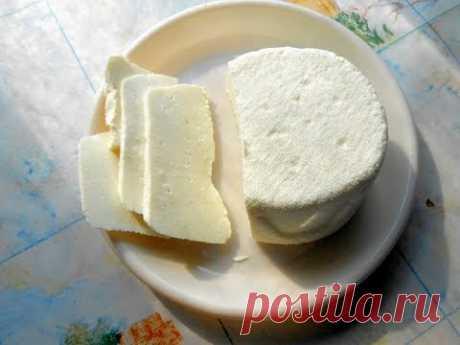 Сыр на кефире малой жирности. Ответы на ваши  вопросы.
