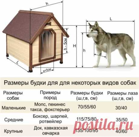 Для того, чтобы правильно выбрать готовую будку для собак или сделать  будку для собаки своими руками, мы должны- замерить: -длину корпуса собаки: -ширину груди собаки: -высоту холки собаки: -расстояние от земли до нижней точки грудины собаки..........