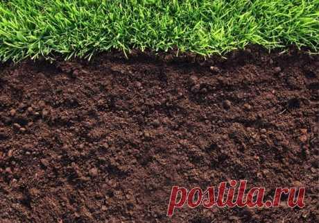 Уникальные способы проверки почвы Уникальные способы проверки почвыХотите узнать, насколько плодородна почва на вашем участке? Тогда вам нужно запастись... бутылкой и соской.Проверить плодородность почвы можно и сейчас, и в оттепели. …