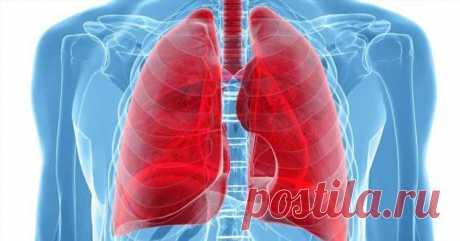 2 дыхательных упражнения для детоксикации легких   Люблю Себя