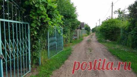 С какими расходами могут столкнуться члены садового товарищества   Полезно (Огород.ru)