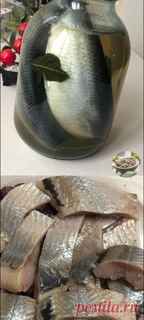 Селёдка в банке Рыба получается, как масло - тает во рту Таким способом можно приготовить и скумбрию! Получится еще вкуснее   Ингредиенты:   3 шт. - свежемороженой рыбы   6 ст.л. - соль   2 ст.л. - сахар   2 л. - воды   лавровый лист, перец горошек     Приготовление:  Сварить рассол, остудить.   Селёдку помыть, сложить в 3-х литровую банку, залить рассолом.   Через 3 дня рыба готова.   Чем больше будет стоять в рассоле, тем будет солёнее.  Рыба получается, как масло ...