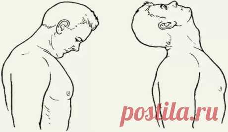 Фантастическое упражнение для восстановления баланса в области шеи Я научилась этому у моих детей и считаю, что выполнение «восьмерок» головой — это просто фантастическое упражнение для восстановления баланса в области шеи и плечевого пояса, верхней части корпуса и всего тела в целом. Упражнение