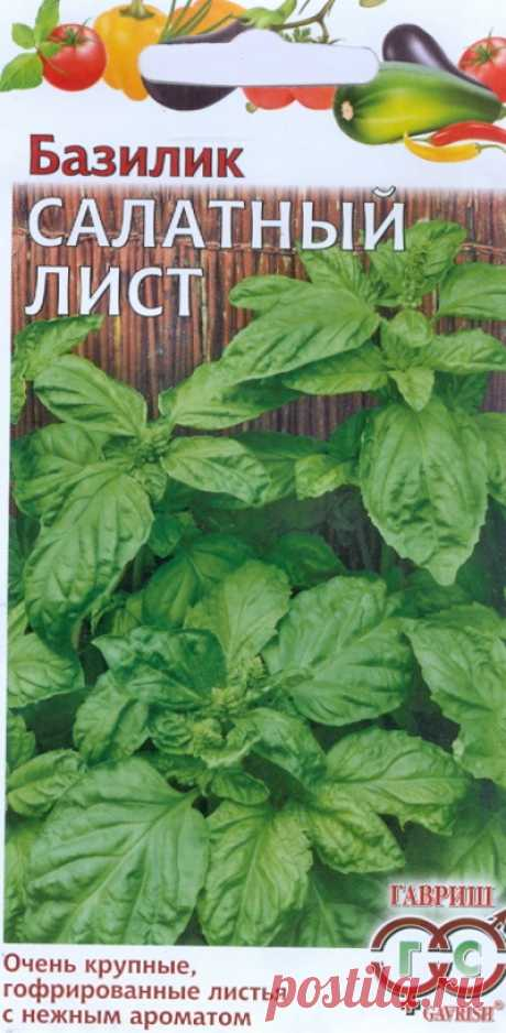 """Базилик """"Салатный лист (бутербродный)"""""""