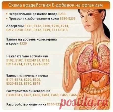 Каких Е-добавок стоит избегать именно вам: какие добавки на какие органы воздействуют