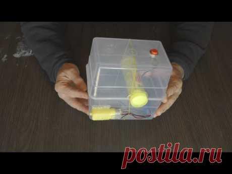 Что можно сделать из пищевого контейнера