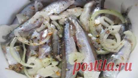 Мойва пряного засола. Рецепт очень вкусной засолки рыбы в домашних условиях | Любимая Дача | Яндекс Дзен