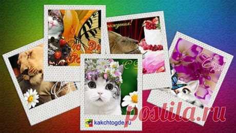 Бесплатные открытки Поздравляю - КакЧтоГде