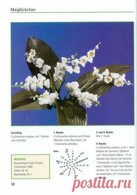 цветы | Записи в рубрике цветы | Дневник ксения_изнова