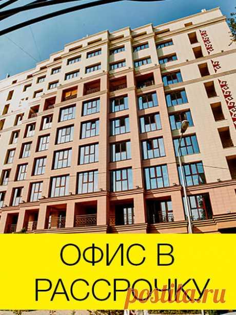 животные зимой: 4 тыс. видео найдено в Яндекс.Видео