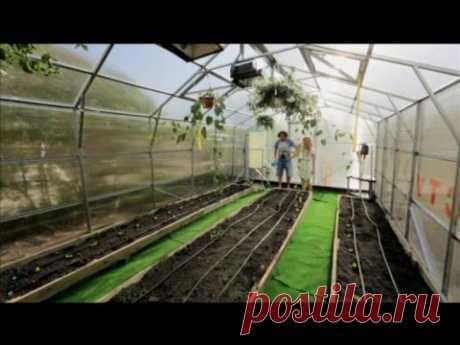 El invernadero del policarbonato por las manos - la Casa de campo de 03\/05\/2014