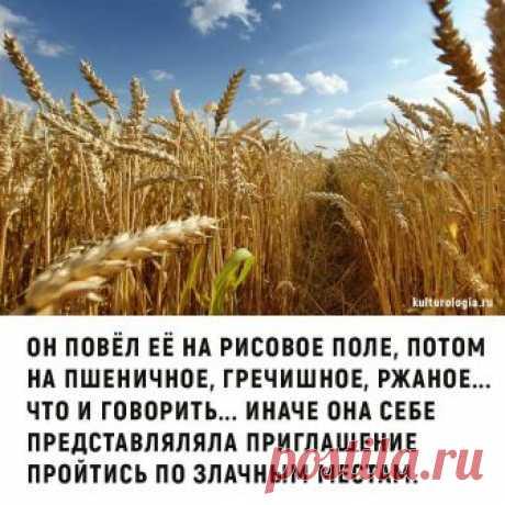(1) Pics.ru - Главная