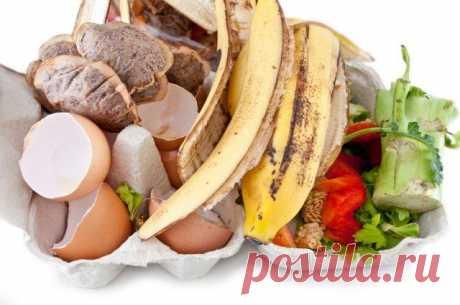 7 продуктов, которые нельзя выбрасывать Утилизируя кухонные отходы, вы не только помогаете экологии планеты, но и обеспечиваете свой участок эффективными, а главное, экологически чистыми, удобрениями. Среднестатистическая семья из трех чело...