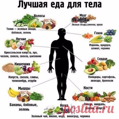 Мы - это то, что мы едим! Подсказки правильного питания, в картинках! Сохраните для себя эту полезную информацию! | Юлия Жданова | Яндекс Дзен