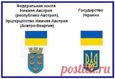 ПРОЗРЕВШИЙ УКРАИНЕЦ  Первое, что я открыл для себя — это то, что я действительно не знаю истории страны, в которой прожил 23 года. К моему удивлению наш флаг оказался флагом Нижней Австрии, а гимн — украденное у поляков «Ещё Польша не погибла». История древней Укропии — извращенная, ворованная, тысячелетняя история Руси. Ведь до революции 1917 года ни такого государства, ни такой национальности из покон веков никогда не существовало. Но лишь приграничная полоса территорий между Россией и Поль