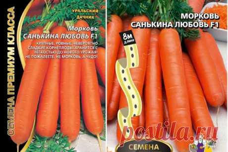 Морковь Санькина любовь F1: отзывы, фото, характеристика, урожайность, описание сорта, достоинства и недостатки, особенности выращивания