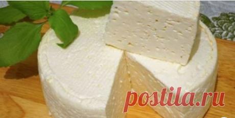 Домашний французский сыр: вкусно, просто и дешево Готовлю сама по рецепту, привезенному из Франции. Делюсь с вами!