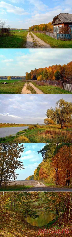 (+1) тема - Золотая осень за околицей!!! | ЛЮБИМЫЕ ФОТО