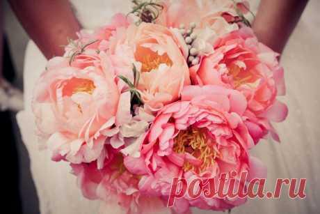 Любимые цветы моей Ирис))