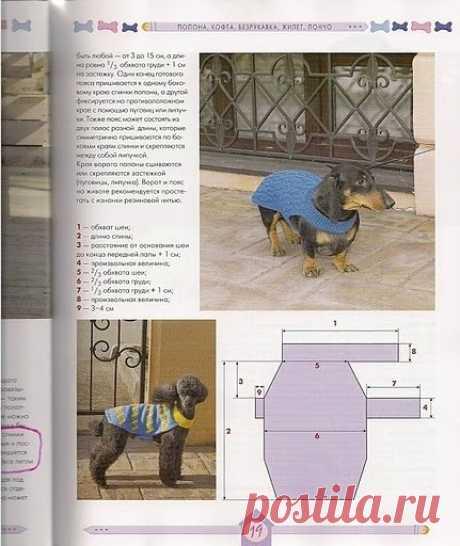 Вязаная одежда для собак: Дневник группы «ВЯЖЕМ ПО ОПИСАНИЮ»: Группы - женская социальная сеть myJulia.ru