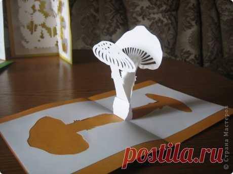 Pop Up открытки-киригами +шаблоны