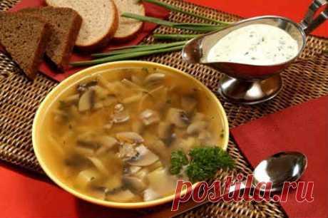 Самый вкусный грибной суп из замороженных грибов - 8 рецептов
