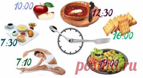 ВСЁ про питание при остеохондрозе шейного, грудного и поясничного отдела позвоночника: меню на неделю, продукты питания, рекомендации и рацион
