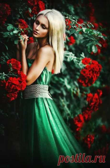 Stunning beauties in photos