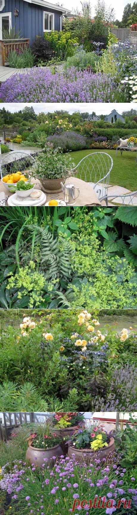 15 советов как самому сделать красивый дизайн сада