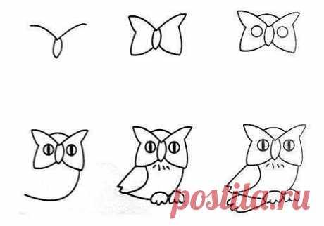 10 примеров, как нарисовать зверей поэтапно