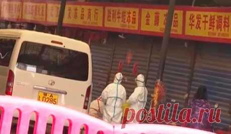 Опасный вирус в Китае. Почти чума 21 века. Стоит ли туда ехать.   Папа на отдыхе   Яндекс Дзен