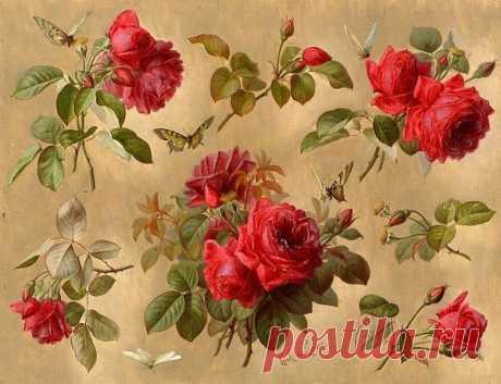 Вещи красоты Мне нравится видеть Поль де Лонгпре (американец, 1855-1911) - розы и насекомые, холст, масло.