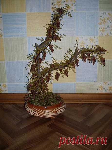 Мастер-класс: Красивое виноградное дерево из бисера