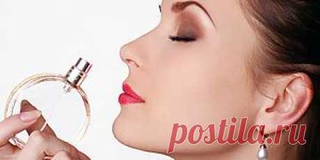 Изменить жизнь с помощью парфюма https://digest.subscribe.ru/woman/beauty/n1185097403.html