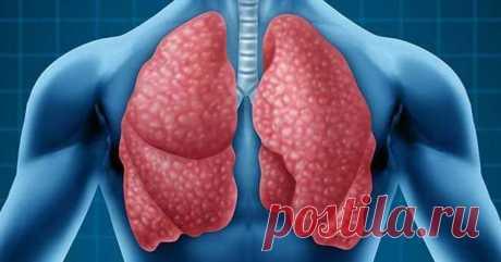 Бронхопневмония: причины, лечение и профилактика   Люблю Себя