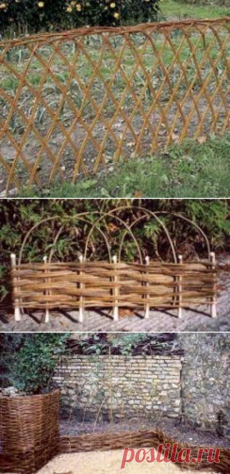 Живая изгородь из ивы - как плести ? Какие ветки подходят для плетения заборов и как их правильно подготовить? |