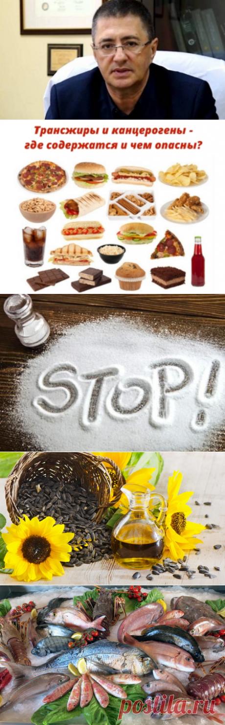 Какую диету использует доктор Мясников? Принципы его правильного питания на каждый день   Кладовая здоровья   Яндекс Дзен