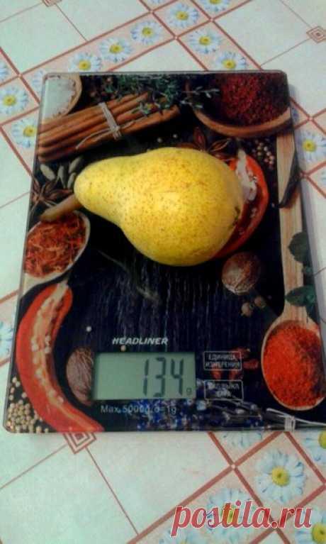 Неочевидные причины лишнего веса. О чем вам расскажет эндокринолог. | Будуар современной Lady | Яндекс Дзен