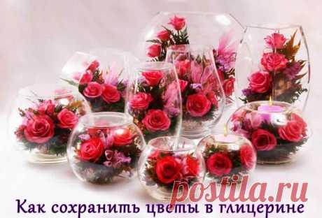 Как сохранить цветы при помощи глицерина.