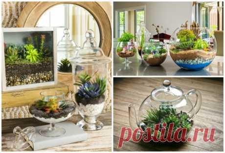 Как сделать сказочный мини-сад своими руками и добавить 100 пунктов к уюту       Мини-сад под стеклом — флорариум — представляет собой прозрачный  контейнер с высаженными растениями внутри. Такой миниатюрный сад требует  к себе совсем не много внимания, поэтому он идеально п…
